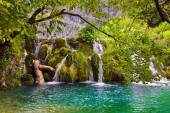 Plitvice lakes in Croatia — Stock Photo