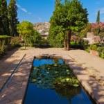 Alhambra palace at Granada Spain — Stock Photo #52641409