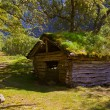 Old house near Briksdal glacier - Norway — Stock Photo #54017465