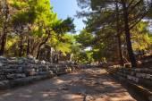 Old town Phaselis in Antalya, Turkey — Stock Photo