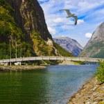 Bridge across fjord Sognefjord - Norway — Stock Photo #55341243
