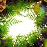 Christmas wreath — Stock Photo #56063143
