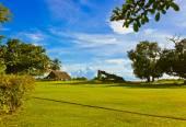 Canopy y árbol en playa tropical — Foto de Stock