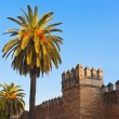 Old fortress wall in Seville Spain — Stock Photo #56877647