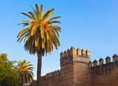 Old fortress wall in Seville Spain — Stockfoto