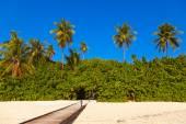Tropical Maldives island — Stock Photo