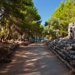 Old town Phaselis in Antalya, Turkey — Stock Photo #59511743