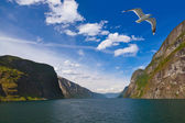 Fjord Naeroyfjord in Norway - famous UNESCO Site — Stock Photo