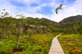 Mountains on the way to the Preachers Pulpit Rock in fjord Lysef — Stock Photo