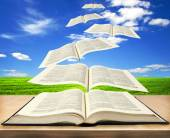 Flying bible pages — Foto Stock