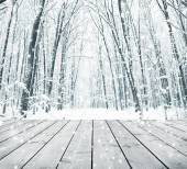 Wooden background with winter forest — Stock Photo