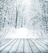 Winter forest with snow and floor — Stock Photo