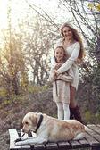 человек с собакой — Стоковое фото