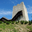Keep tower of Celje medieval castle in Slovenia — Stock Photo #63298801
