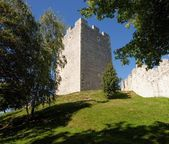 Keep tower of Celje medieval castle in Slovenia — Stock Photo