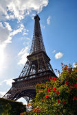 Eiffel Tower at sunset, Paris, France — Stock Photo