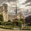 View of the Cathedral of Notre Dame de Paris from old city park — Stock Photo #56205183