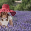 Shy woman in a lavender field — Stock Photo #56378057