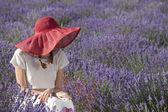 Mujer en el campo de lavanda — Foto de Stock