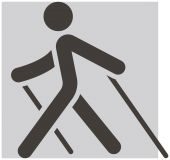 Nordic Walking icon — Stock Vector