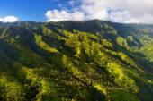 Kauai jungles in Hawaii — Foto de Stock
