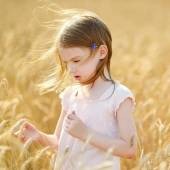 Preschooler girl walking in wheat field — Stock Photo