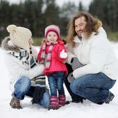 Happy family on snowy winter day — Stock Photo