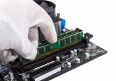 Electronic collection - Installing memory module in DIMM slot on — Stockfoto