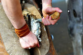 Blacksmith clearing hoof of a horse — Stock Photo