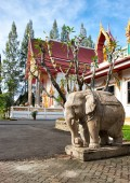 Elephant statue in Wat Sri Sunthon temple — Photo
