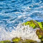 The waves of Bosphorus — Stock Photo #67735525