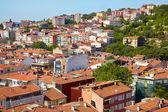 Red roofs of residential houses on the shore of the Bosphorus, I — Stock Photo