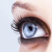 Close-up Schuss von weiblichen Augen make-up — Stockfoto
