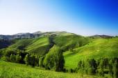 Landscape with green hills — Stock Photo