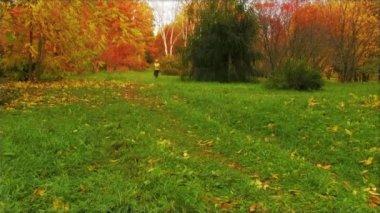 Girl running in autumn park — Video Stock