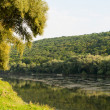 River Dniester — Stock Photo #53839607
