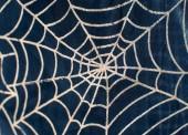 Web pro halloween — Stock fotografie