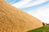 Large stack of straw — Stock Photo