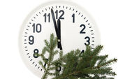 Watch with fir branch  — Stockfoto