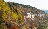 美しい秋の風景 — ストック写真