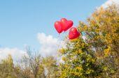 Valentine heart balloons — Stock Photo