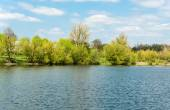 Spring landscape at the lake — Stock Photo