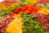 Variety of spices - food background — Stock Photo