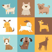 Funny and friendly dogs and puppies — Stock Vector