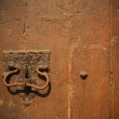 Vintage door — Stock Photo #60416575