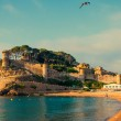 Tossa de Mar, Catalonia, Spain, JUNY 13, 2013 — Stock Photo #62384069