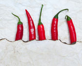 Fiery red chili peppers — Stock Photo