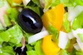 Assortiment de salade de laitue en feuilles vertes avec des calamars et des olives noires — Photo