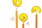 Three pencil flowers — Stock Photo