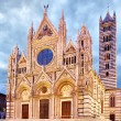 Cathedral of Siena — Stock Photo #53174787
